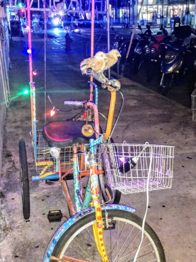 fritas outdoor bike